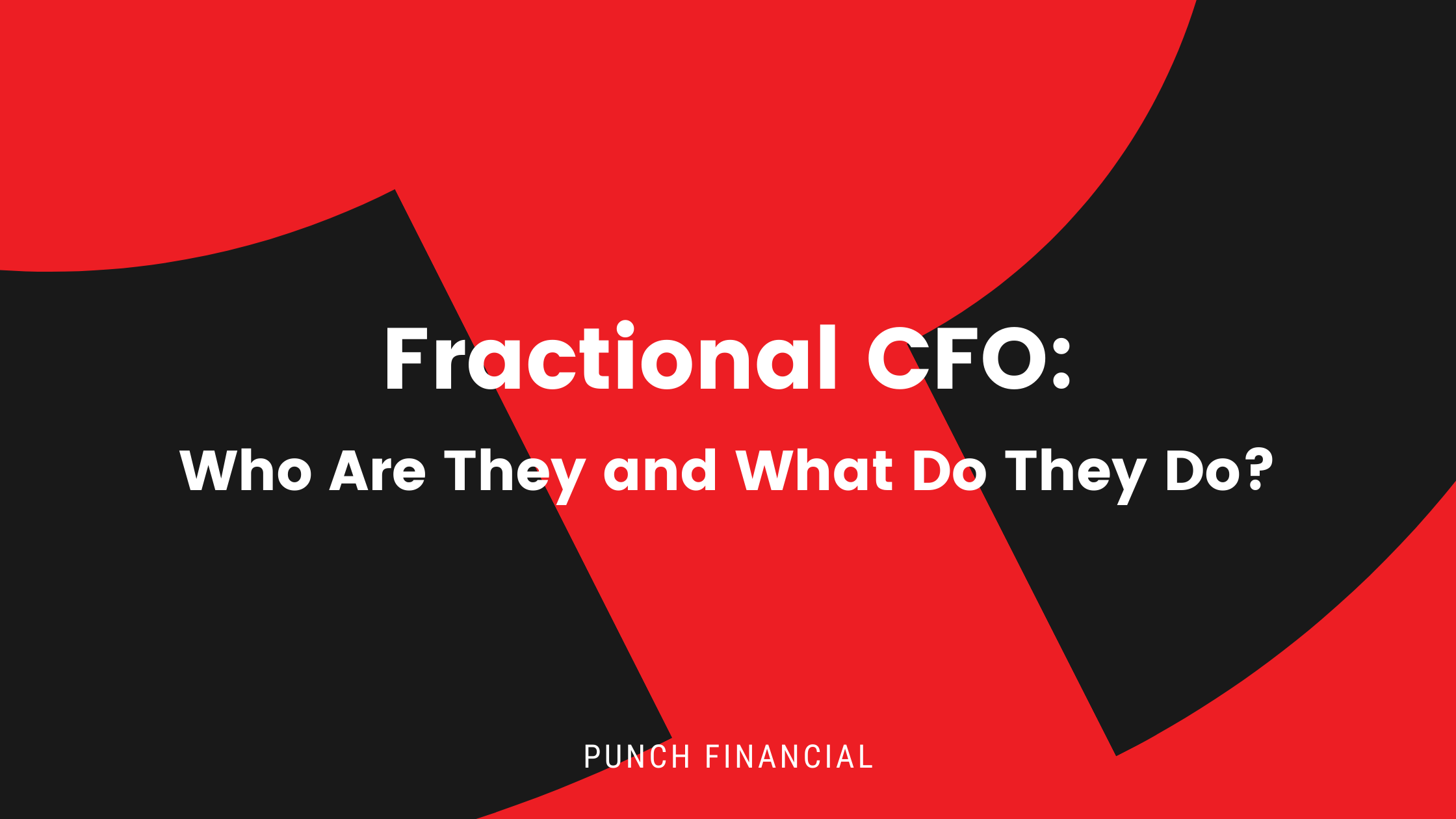 Fractional CFO: Who Are They and What Do They Do?