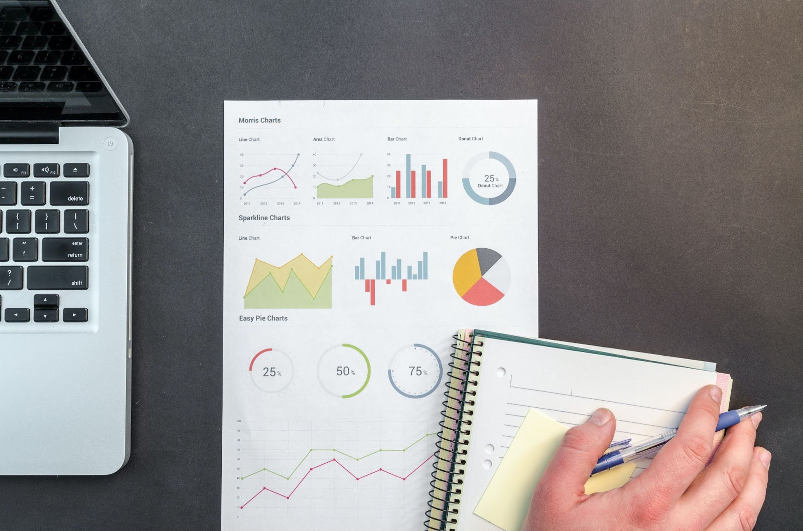 Preparing for a Profit and Loss Report